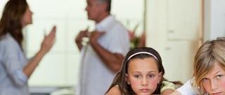 ouderschapsplan dordrecht